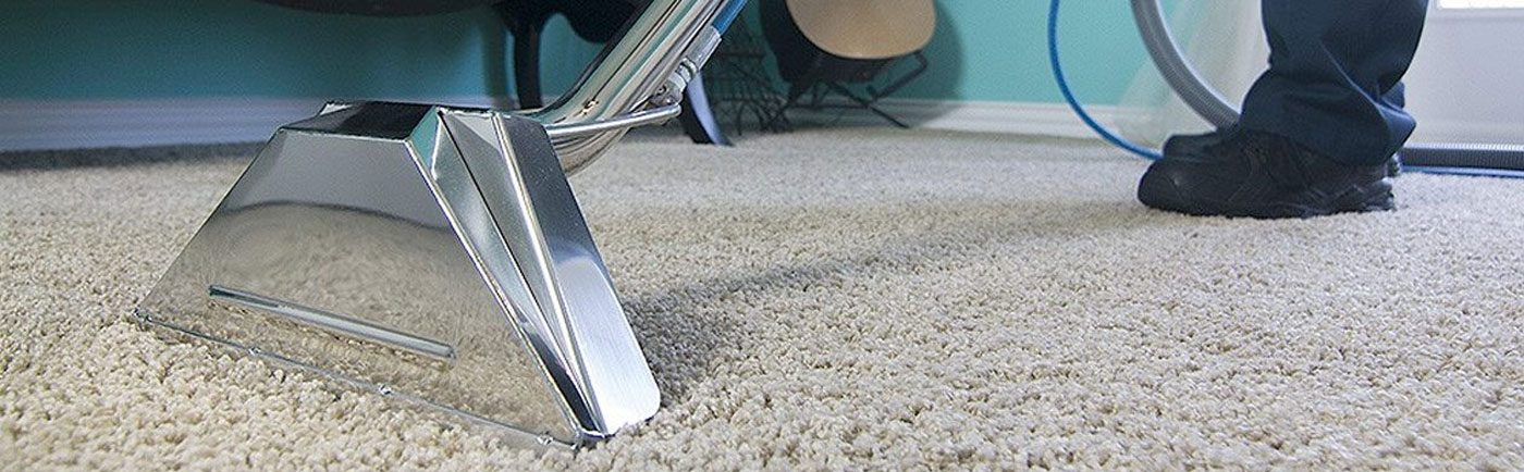 Miraculous Green Co Carpet Cleaning Los Angeles Ca Residential Home Best Image Libraries Barepthycampuscom